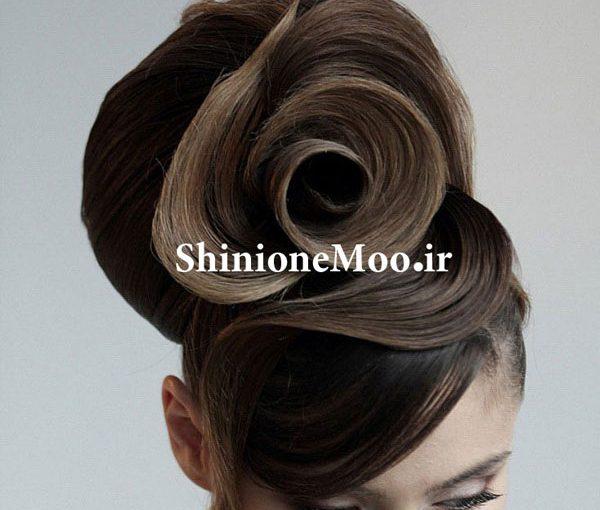 آموزش تخصصی شینیون – مدل های شینیون مو