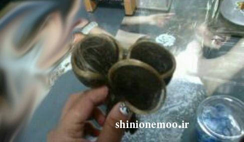 آموزش شینیون همراه با عکس